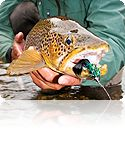 Streamer fly fishing taught by Orvis