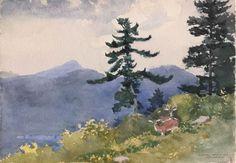 Winslow Homer Watercolors | winslow-homer-watercolors-north-woods-club-adirondacks-or-the ...