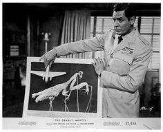 The Deadly Mantis 1957 - Craig Stevens