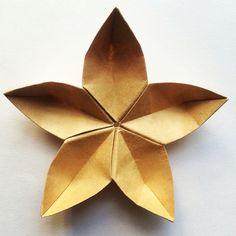 Origami Time! 02/53 Sakura 桜の花 #おりがみ #折り紙 #二本 #日本 #종이접기 #花 #桜 #papiroflexia #origami #paper #paperfolding #fold #foldedbyme #foldoftheday #instaorigami #Winter #ElParaiso #January #10 #2016 #Caracas #Venezuela #chicoquick #