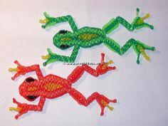La grenouille de Fitz                                                                                                                                                     Plus