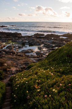 Places In California, California Coast, Beautiful Places, Beautiful Pictures, All Nature, Pebble Beach, Adventure Is Out There, Aesthetic Pictures, Landscape Photographers