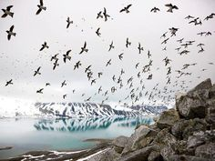 National Parks of Svalbard, Norway