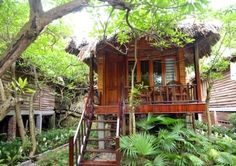 #Treehouse in #Hanoi
