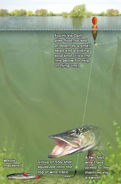 Matt Hayes: How to catch pike