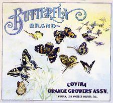 Covina Butterfly Orange Citrus Fruit Crate Label Art Print