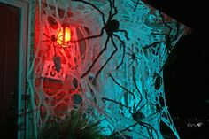 Name:  House Webs Right.jpg Views: 537 Size:  106.3 KB