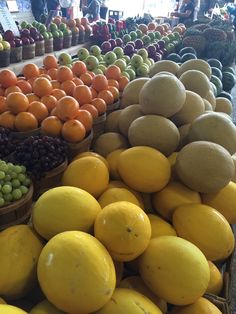 Yellow honey dew melon side by side with cantaloupe, oranges and grapes #bliss