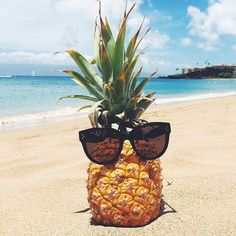 Até  o abacaxi tem um óculos  da hora e eu n,