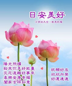 Good Day Wishes, Good Morning, Poster, Chinese, Buen Dia, Bonjour, Good Morning Wishes, Billboard, Chinese Language