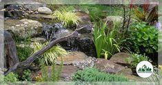 New Jersey Pond & Landscape Photo Gallery