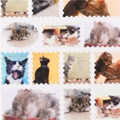 cute cat stamps stickers from Japan - preciso
