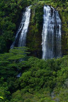 Opaekaa Falls, Kauai, Hawaii   Kauai is extremely green, lush, and waterfalls are abundant....beautiful.