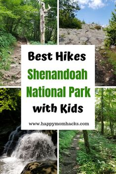 Hiking in Shenandoah National Park. 7 best hikes for kids to waterfalls, on the … Hiking in Shenandoah National Park. Shenandoah National Park, Shenandoah Valley, Shenandoah Virginia, Park Trails, Hiking Trails, Hiking In Virginia, Best Weekend Getaways, National Parks Map, Viajes