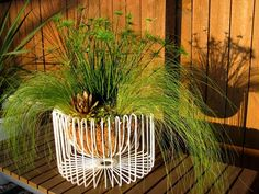 When I bought that ikea tradig wire bowl  back in January, I knew I was going to have some creative fun with it.  I mean it can't JUST be ...