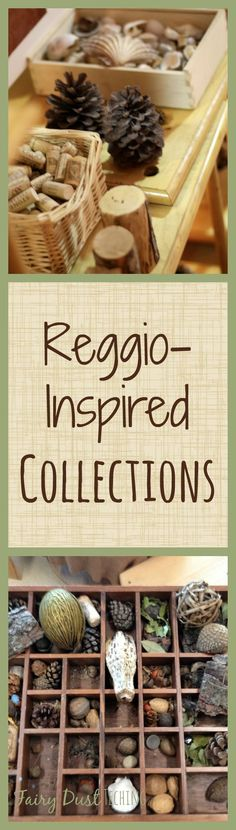 Beautiful Reggio-Inspired Collections. See more at Fairy Dust Teaching.  #ECE #looseparts