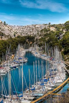 A packed marina in Croatia.
