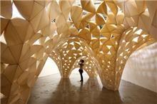 arquitectura y plasticidad