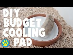 DIY Budget Cooling Pad For Small Pets - YouTube