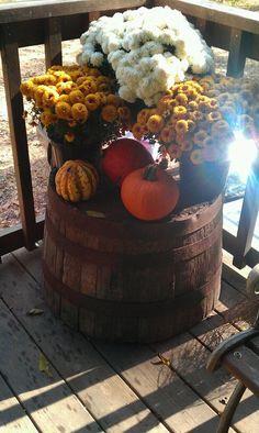 Repurpose an old barrel