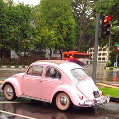 Cute car:)