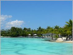 #Plantation Bay #Resort #Spa #Cebu  #Mactan #Island. A huge man-made #swimming lagoon #Philippines   #beach #love #summer #beautiful #travel #pool #sunset #nature #photography #ideas #onedirection