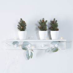 Mini Potted Fir Trees Set of 3   The White Company. Shopping from the US? -> http://us.thewhitecompany.com/Holidays/Christmas-Trees/Mini-Potted-Fir-Trees-Set-of-3/p/WGHPT?swatch=Green