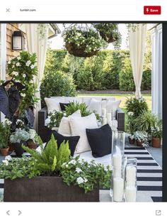 Rounded and fanned plant shapes:  ball topiary, grasses, hanging baskets, ferns, -  juxtaposed with long tubular shapes in the form of candles in their glass sleeves.  White flowers: verbena, petunias (or calibrachoas?), gardenia