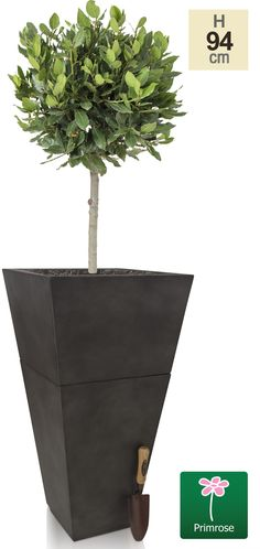 This innovative two-in-one planter is a brilliantly versatile addition to your garden. The flared fibrecotta planter can be used either as one entire planter, or can be split in two and used as two separate planters. Whether you're looking to fill one space in the garden or two,