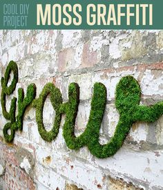 How To Make Moss Graffiti Wall Art | DIY Decor Project Ideas and Tutorial by DIY Ready.