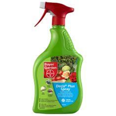 #hortadendauw #kuurne #kortrijk #DecisPlusSpray is een product klaar voor gebruik #RTU dat uitermate geschikt is voor de #bestrijding van #bladluizen en tal van andere #insecten in de #tuin, #moestuin en op #sierplanten.