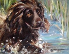 SPARROW Boykin Spaniel hunting water  gift for Dog lover portrait art painting
