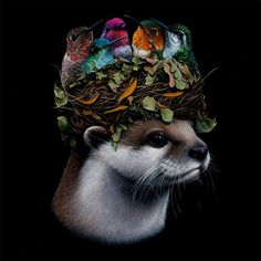 Creating stunning, realistic depictions of animals and objects, Canadian artist Jacub Gagnon includes surreal elements within his compositions, taking us out of… Art Gallery, Art Works, Animal Art, Canadian Artists, Surreal Art, Artist, Surrealism, Animal Paintings, Artist Interview