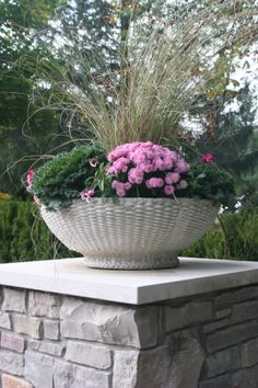Flower Pots to add a touch of color