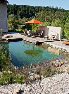 Schwimmteich bauen wir f hren alle produkte die sie zum - Kunstfelsen pool ...