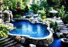 Freeform Swimming Pool Designs | Swimming Pool Builder | Premier Pools And Spas