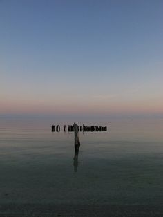 Dawn: Pure and simple...old pier in the sea - Isla Holbox, Mexico