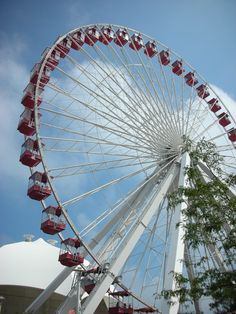 Ferris Wheel--Chicago's Navy Pier