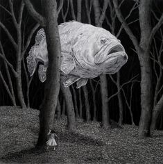'Ghost Fish' - Chris Odgers