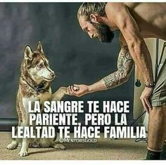 Wolf Quotes, True Quotes, Motivational Phrases, Inspirational Quotes, Spanish Quotes, I Love Dogs, Positive Quotes, Nostalgia, Best Friends