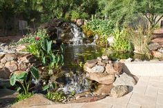 Waterfall created by The Pond Gnome in Peoria, AZ. #WaterfallWednesday