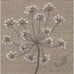 Cow Parsley on Linen II