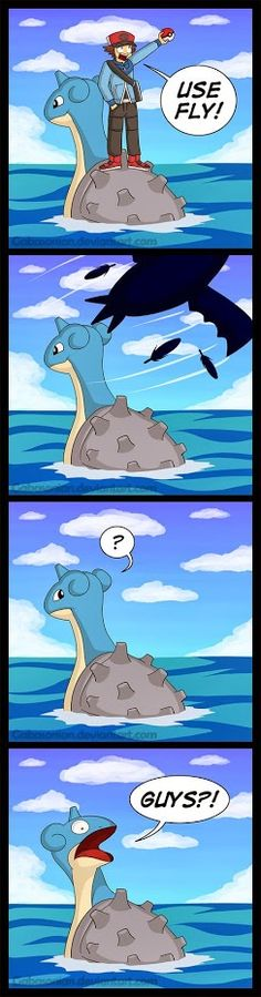 Why you don't use fly during Surf / Pokemon Logic