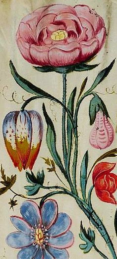 One stem, many flowers: Unknown (French) Botanical Illustrating Family Land Document, detail 1630 Vintage Prints, Vintage Botanical Prints, Botanical Art, Art And Illustration, Illustrations, Art Floral, Fine Art Drawing, Art Drawings, Illustration Botanique