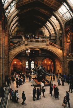 Central Hall, Natural History Museum, London
