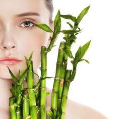 Benefícios do Bambu