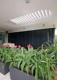 #diamonddesigncz #diamonddesigneu #outdoorliving #bioklimatic #bioklimatickepergoly #camargue #aero #renson #lamelovystrop #minimalist #sunprotection #rainprotection #dustprotection #stineni #ochranapreddestem #ochranapredvetrem #ochranapredprachem #windprotection #integratedscreens #integrovanescreeny #luxuryterrace #luxusniterasa #whirlpool #vířivka Solar Shades, Diamond Design, Terrace, Outdoor Living, Pergola, Minimalist, Outdoor Furniture, Luxury, Plants