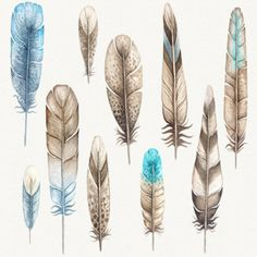 watercolor feather, feather vector clipart. The graphics are hi-res and perfect for both digital and print use.   Cute and high quality digital clipart that you will surely love! Perfect for invitations, greeting cards, photos, posters, quotes, wrapping presents, scrapbook pages, cards, party decorations, book/journal cover, product design and many more! Use these elements for digital scrapbooking, Valentines invitations, greeting cards, gift tags, wrapping paper, party supplies, web sit...
