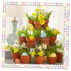 small pots in a mini cupcake holder w/ wheat grass, daffodils and dyed easter eggs..cute!