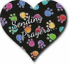 My friend I am Truly sorry for your loss.I know your love for animals comes from your heart. Get Well Prayers, Get Well Wishes, Animal Line Drawings, Pet Loss Grief, Sending Prayers, Prayers For Healing, Good Buddy, Dog Memorial, Prayer Warrior